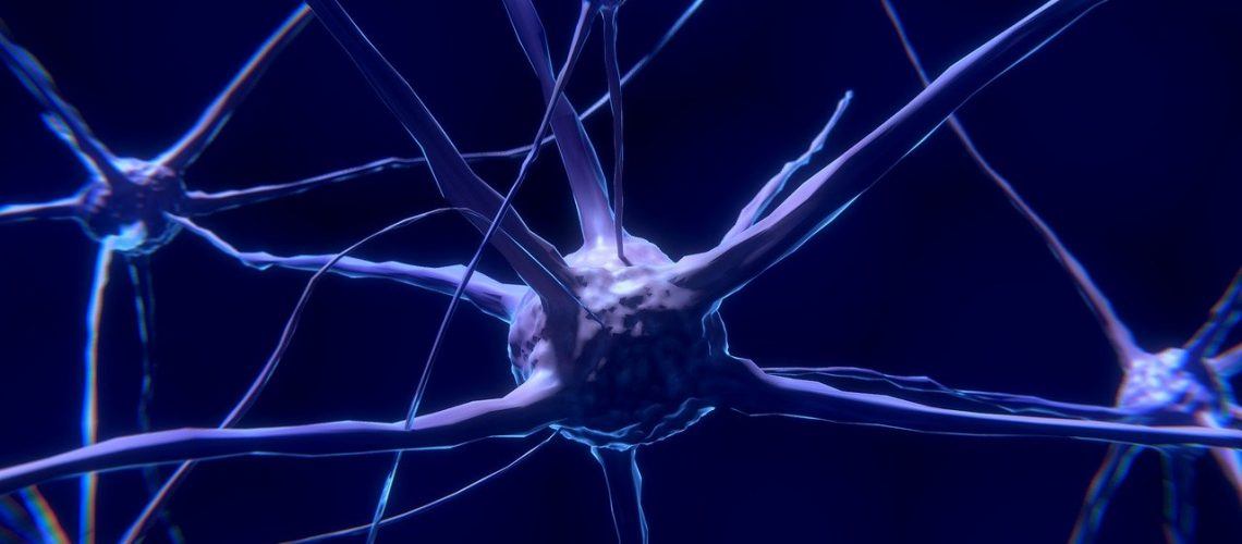 nerve-cell-2213009_1280